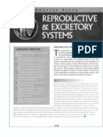 Lab FetalPig Excretion Reproduction