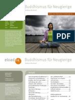 buddhismus-fuer-neugierige