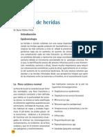 INFECCION_HERIDAS