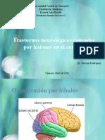 Trastornos neurológicos causados por lesiones en el cerebro