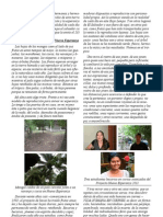 carta número 123 (31-05-2011) del Bajo Lempa/El Salvador