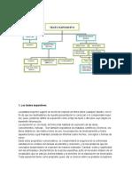 Diagrama Del Texto Expositivo