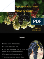 Post Harvest Technology of Grapes