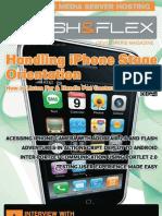 Handling iPhone Stage Orientation FFD 05 2011
