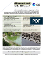 Harmful Algal Blooms & Muck What's the Difference