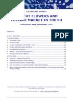 Market Flower Europe