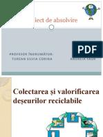 Andreia Faur Atestat -Colectarea si valorificarea deseurilor reciclabile-