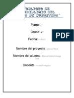 Manual Word PDF