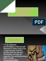 Oclusion Dental