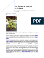 Coco orgânico 1