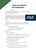Resumo de estudo Hermenêutica