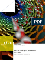 Nanotechnology in Perspective Summary[1]