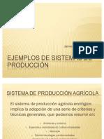 Ejemplos de sistemas de producción