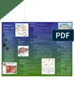 Jackie Tasarz-Liver Pathogens Revised