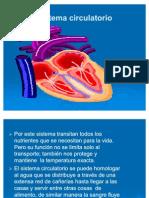 04_Circulatorio (anatomia 1° año unidad 4)