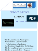 12 Lipidos