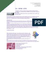 Flusingapur Info[1]