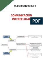 QUESTIONARIO - COMUNICACIÓN INTERCELULAR