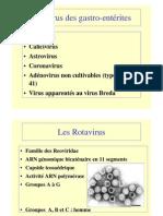 Les Virus Des Gastro Enterites3