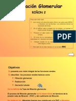 rinon2filtracionglomerular-movil