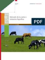 BDO Reporte Sectorial Mercado Carne