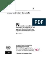 Necesidades de Bienes y Servicios Ambient Ales de Las Pyme en Colombia