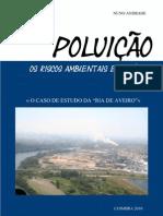 Seminario Final - Poluição, os riscos ambientais em analise