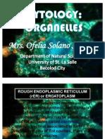 Cytology Organelles
