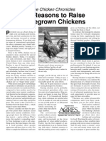 Ten Reasons to Raise Homegrown Chickens