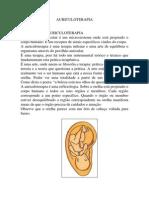 auriculoterapia resumo