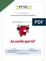 Rapport Lvqr