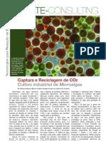 Folheto Climate sobre Produção de Microalgas