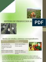 SISTEMASZ DE PRODUCCION.pdf