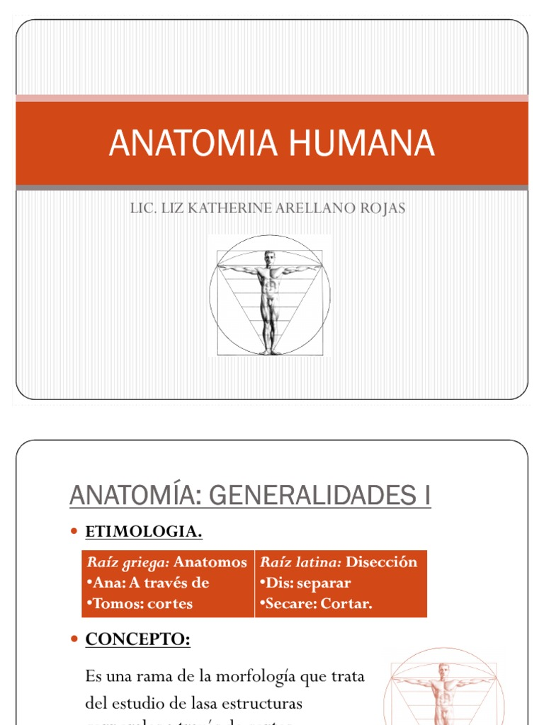 ANATOMIA HUMANA adela