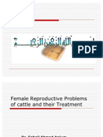 Female Reproductive Problems of Cattle