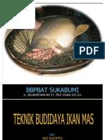 Teknik Budidaya Ikan Mas Adi