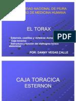1. TORAX DANNY