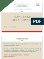 Port a Folio Personal Estilos de Aprendizaje
