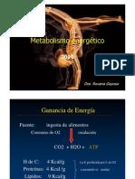 Regulacion.glicemia