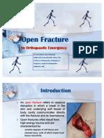 Open Fracture Raju3