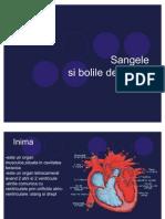 Sangele Si Bolile de Sange3.