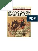 Ana Catalina Emmerick Libro 4