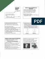 Lab 4 Diagnosticul Gestatiei Prin Metode Clinice