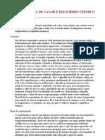 TRANSFERÊNCIA DE CALOR E EQUILÍBRIO TÉRMICO