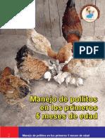 1265737813_Manejo de Pollitos en Los Primeros Cinco Meses de Edad.