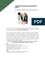 Nuevo Plan Contable General rial 2010