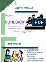 Funcionamiento Familiar Cohesion[1]
