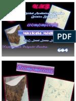 Expo de Cromomicosis