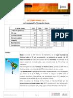 BRASIL INFORME PAIS 2011