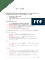 GL1-4 A Teoria da Liderança